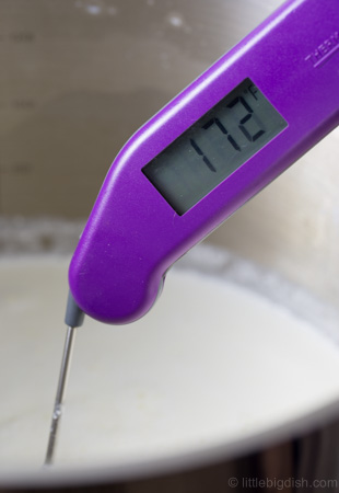 Homemade_Ricotta_Temp