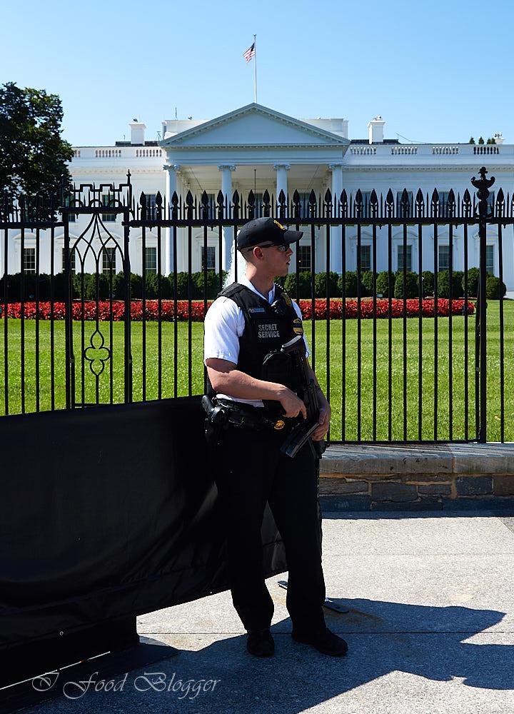 Secret Service guarding the White House